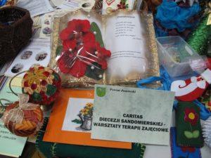 Specjaliści Partnerstwa Lokalnego i Ekonomii Społecznej w powiatach: biłgorajskim, tomaszowskim, janowskim, zamojskim ziemskim i zamojskim grodzkim 59